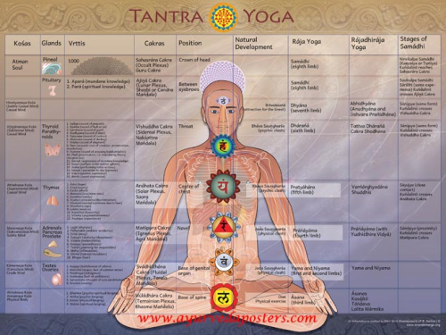 Tantra Yoga Poster