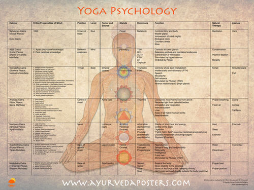 Yoga Psycology