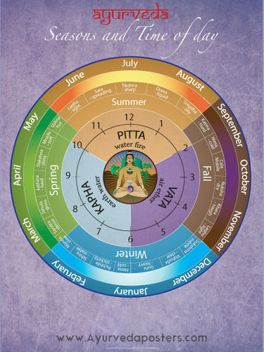 Ayurvedic Dosha Clock and Seasons