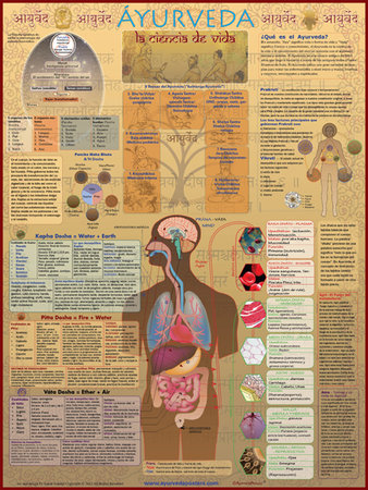 Ayurveda poster in Spanish\\n\\n3/18/2015 7:36 PM