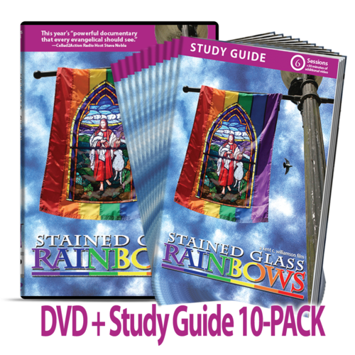 Stained Glass Rainbows DVD + Study Guide 10-PACK Bundle