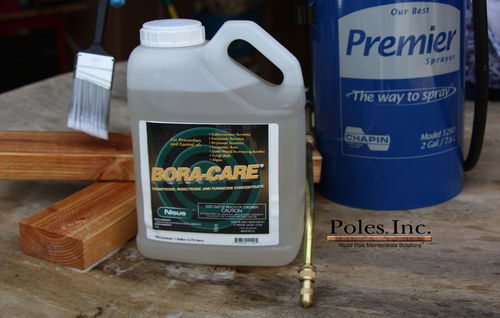Bora-Care (1 Gallon Jug)