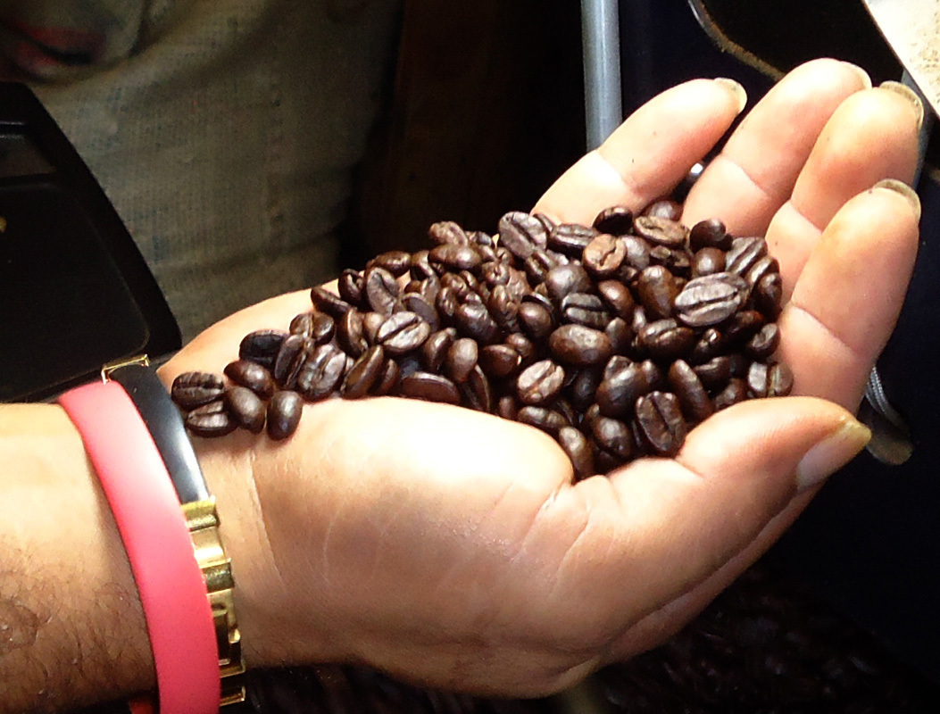 handfull_of_coffee_beans