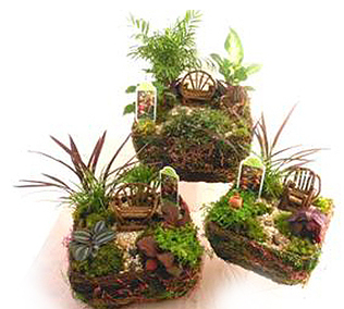 Moss_and_vine_fairy_garden