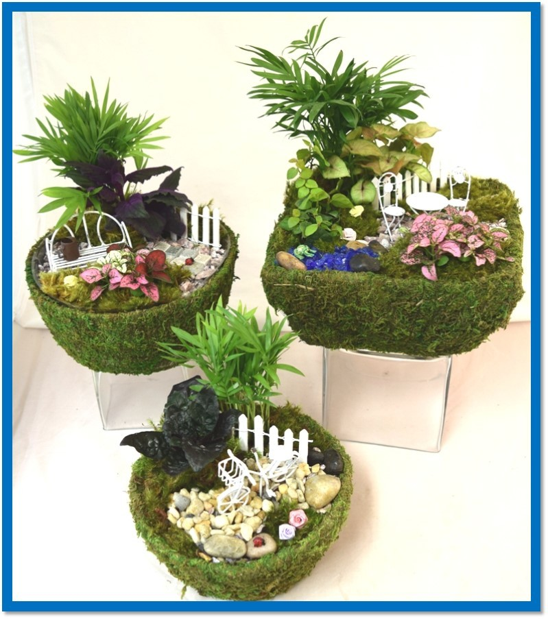 mini_garden_moss_baskets