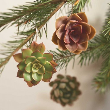succulent_ornaments