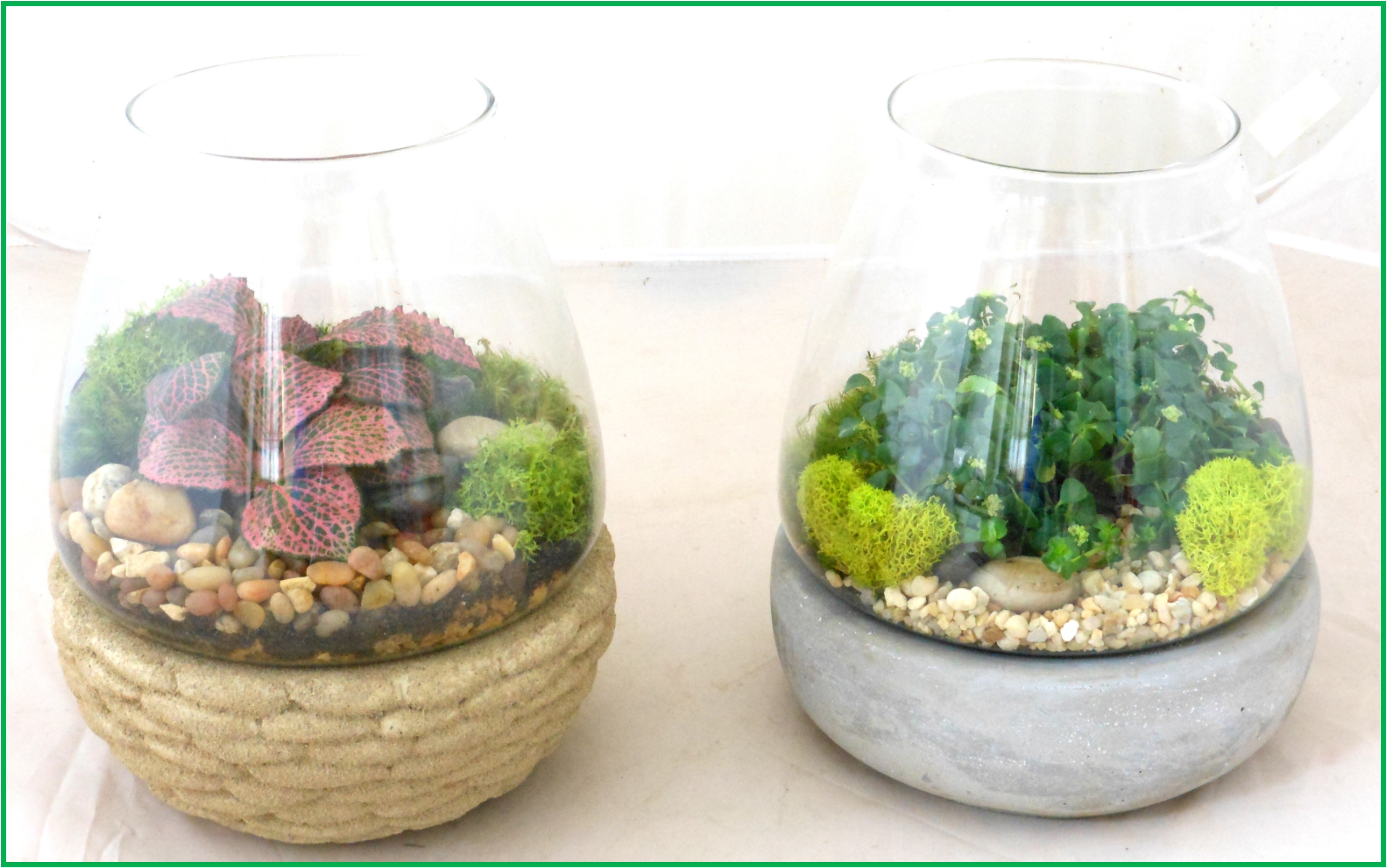 terrarium_on_stone_pedestal